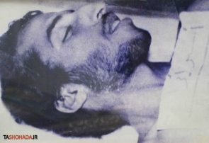 شهید محمدرضا شفیعی